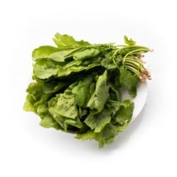 kress-salat