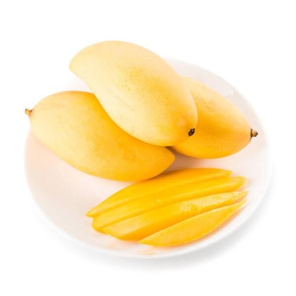 mango-tai